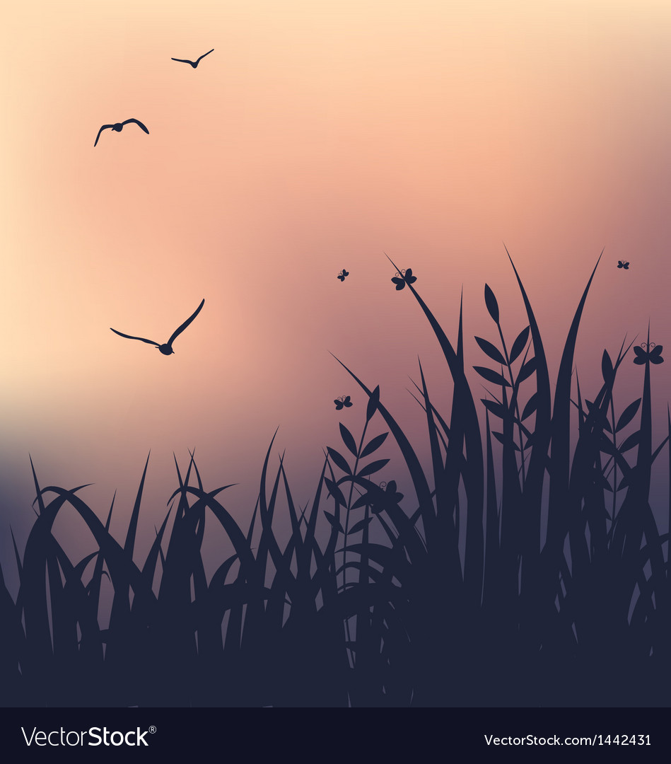 Sunset with grass and flying seagulls vector | Price: 1 Credit (USD $1)