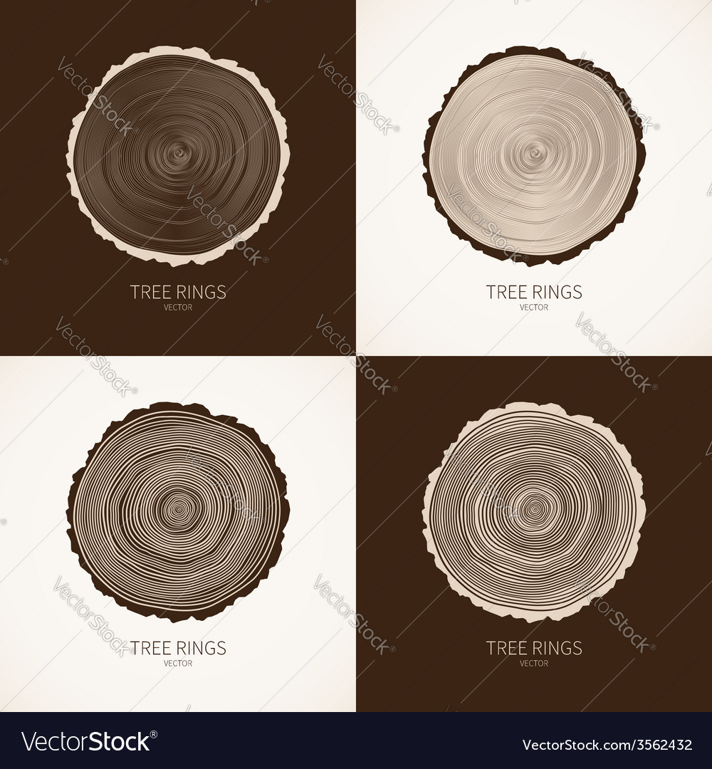 Tree rings conceptual background vector   Price: 1 Credit (USD $1)