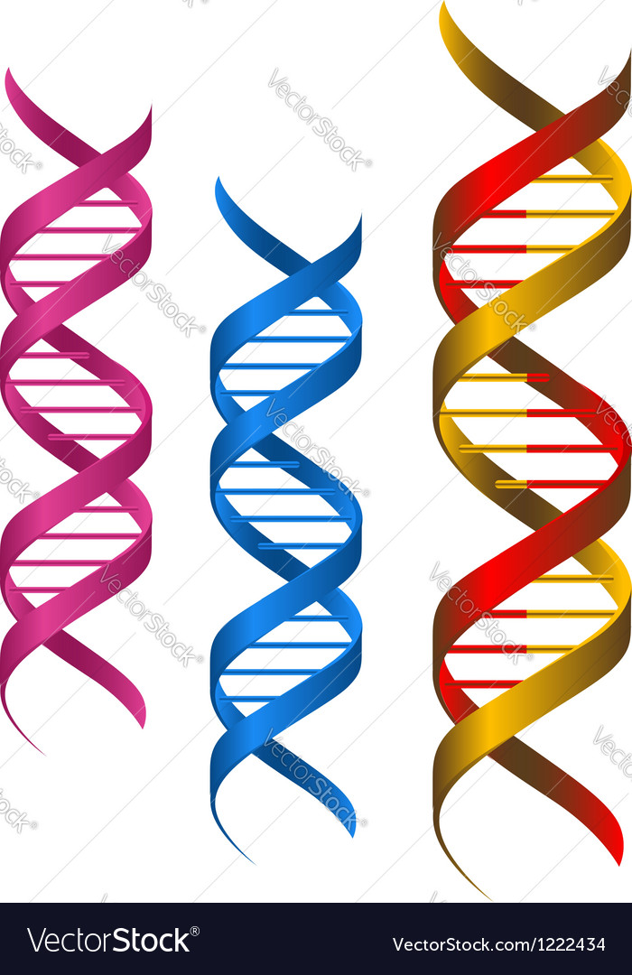 Dna elements vector | Price: 1 Credit (USD $1)