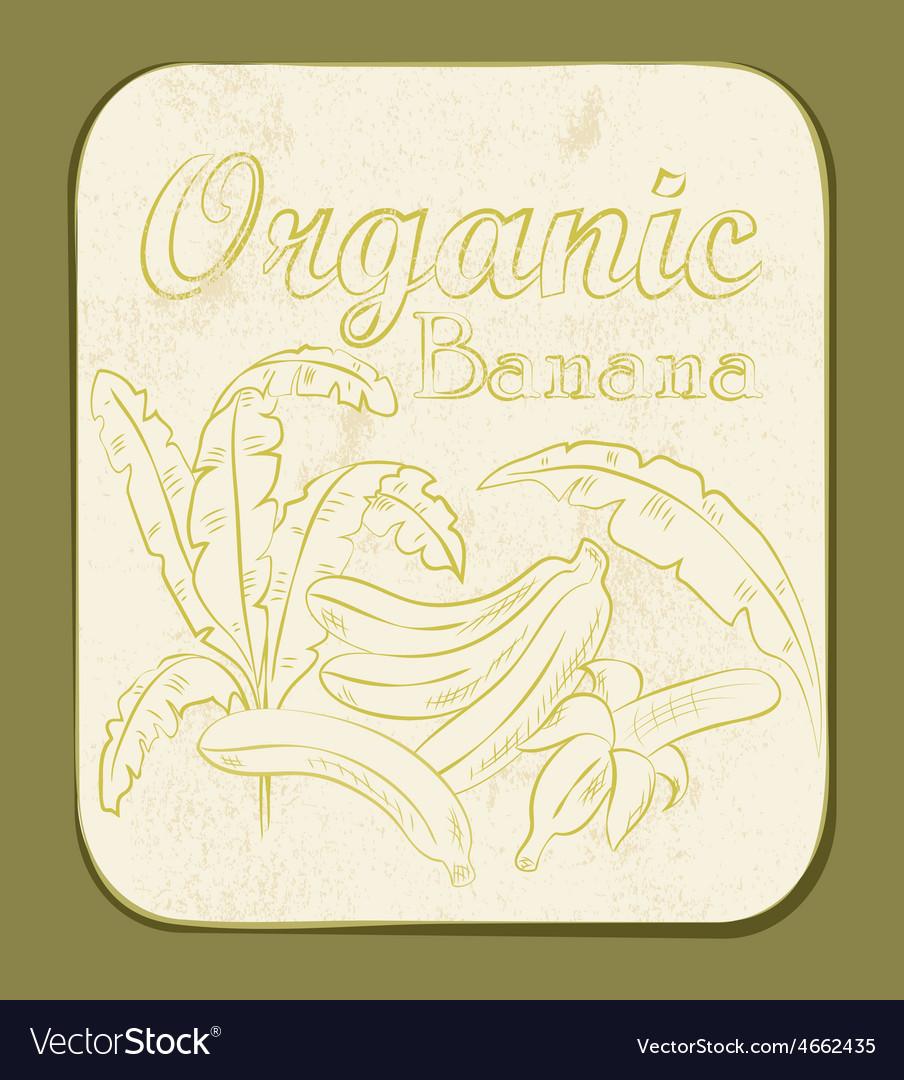 Banana label vector | Price: 1 Credit (USD $1)