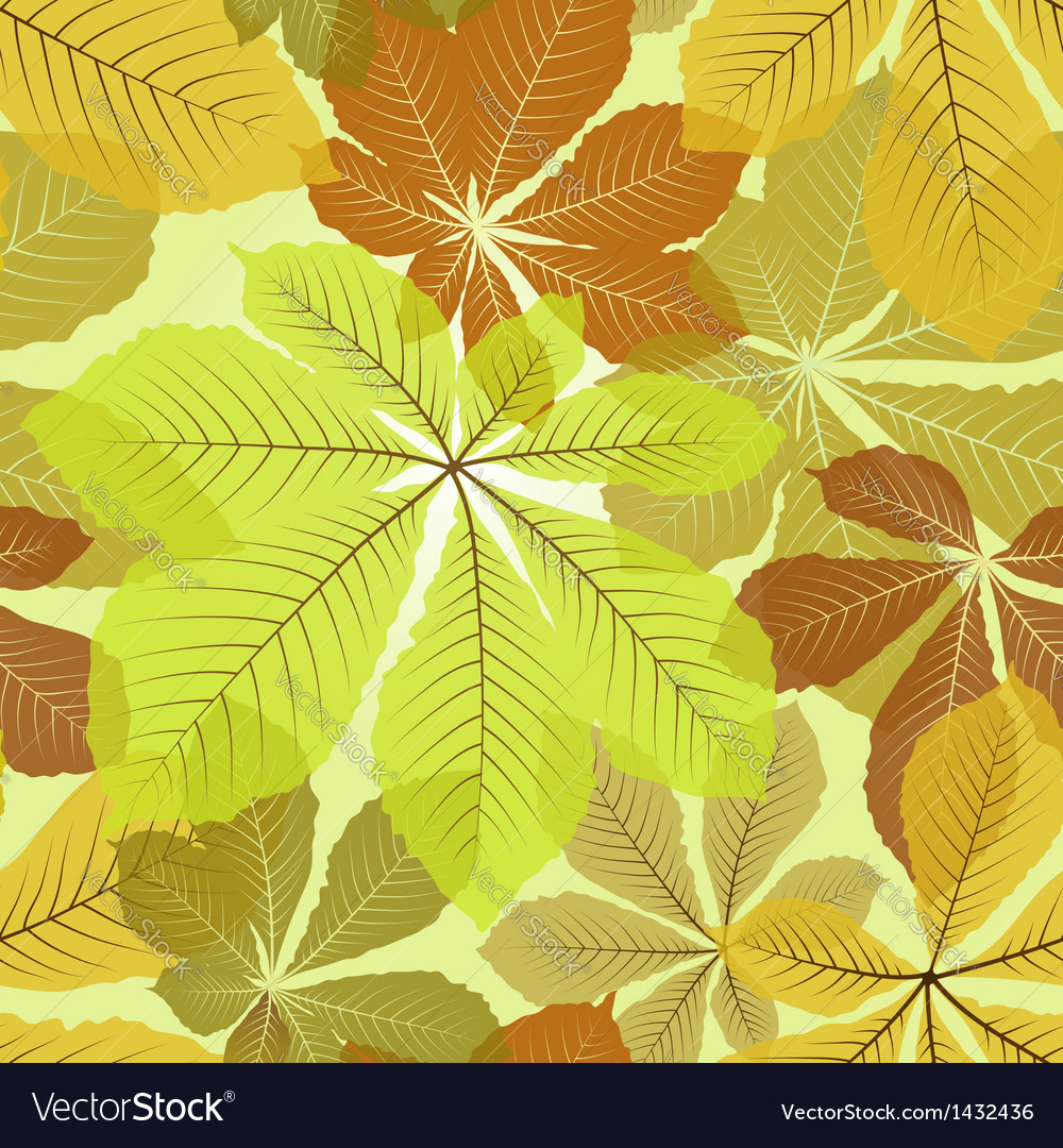 Chestnut leaves vector | Price: 1 Credit (USD $1)