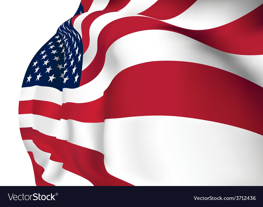 United states of america flag vector | Price: 1 Credit (USD $1)