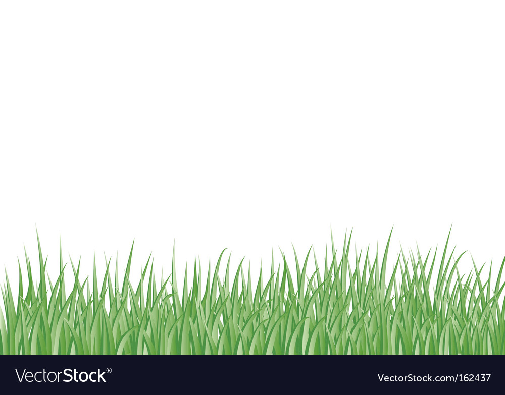Grass border vector | Price: 1 Credit (USD $1)