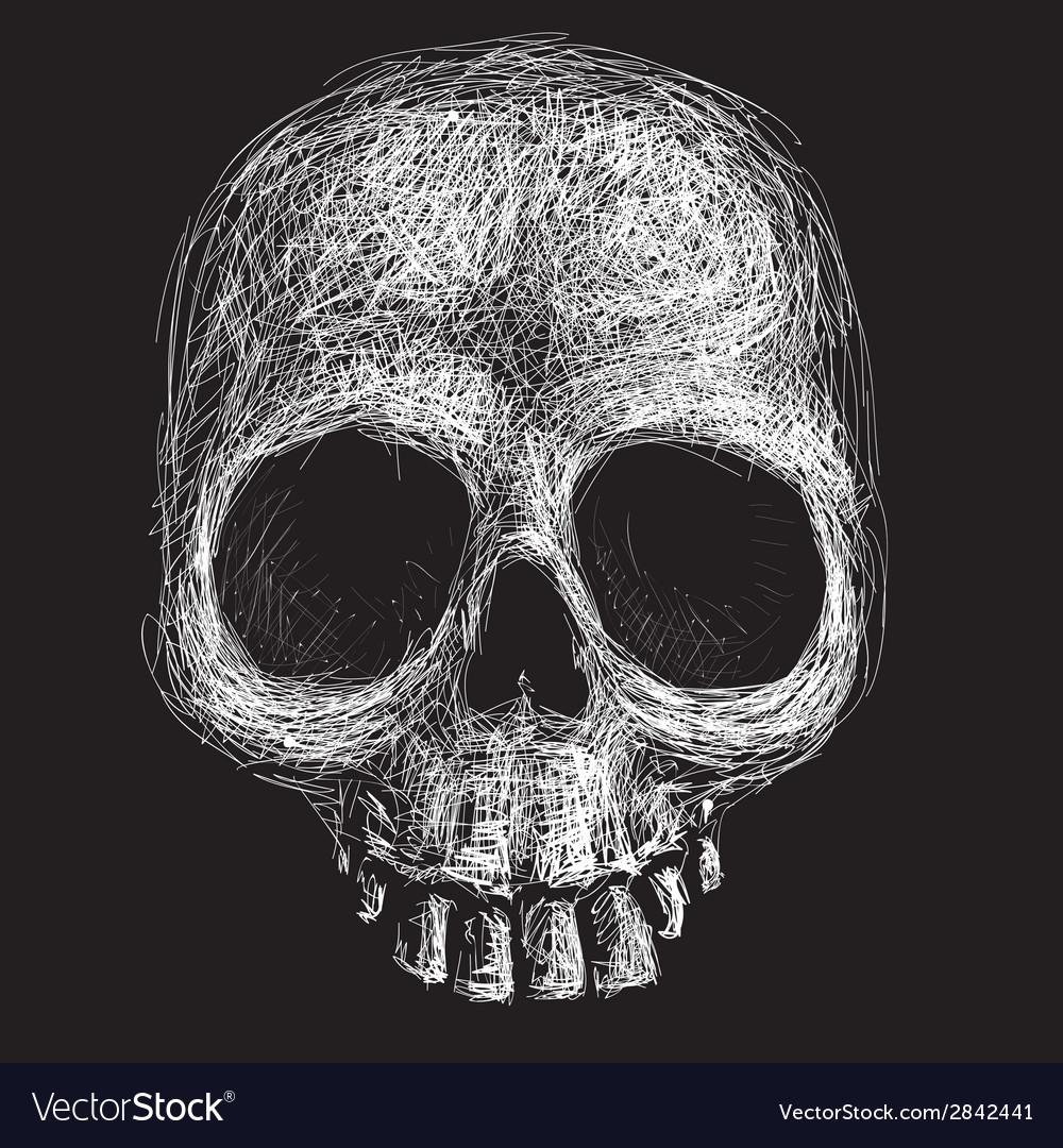 Hand drawn skull vector | Price: 1 Credit (USD $1)