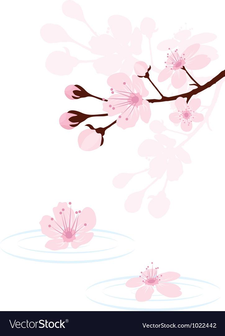 Cherry branch vector   Price: 1 Credit (USD $1)