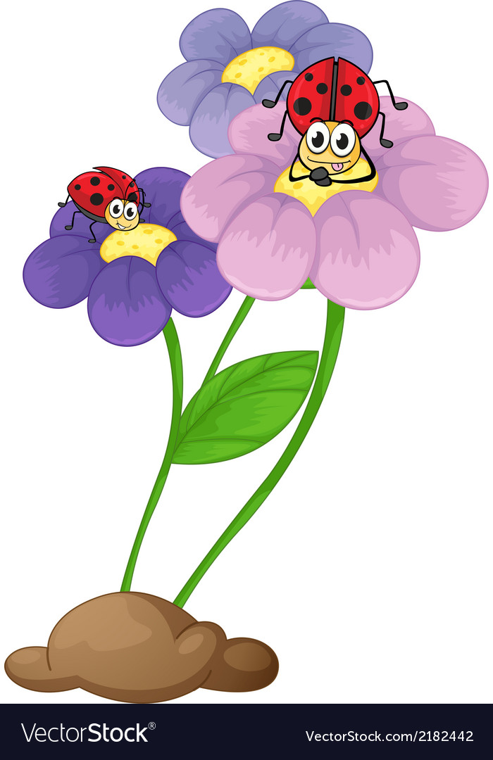 Flowers with ladybugs vector | Price: 1 Credit (USD $1)