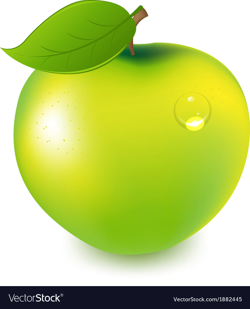 Green apple with water drop vector | Price: 1 Credit (USD $1)