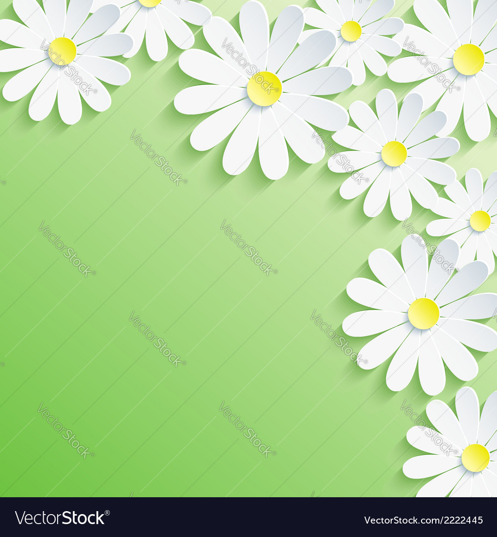 Summer background with 3d flower chamomile vector | Price: 1 Credit (USD $1)