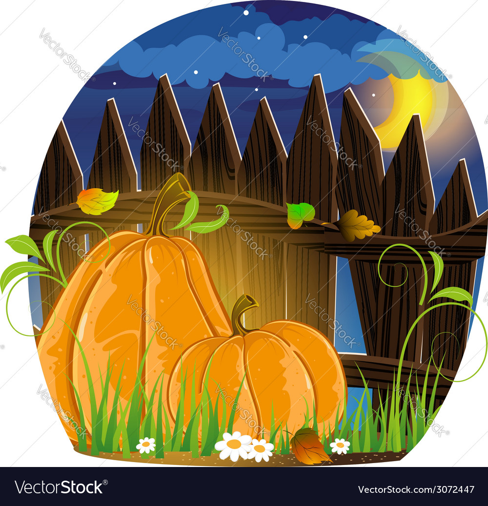 Autumn pumpkins vector | Price: 3 Credit (USD $3)