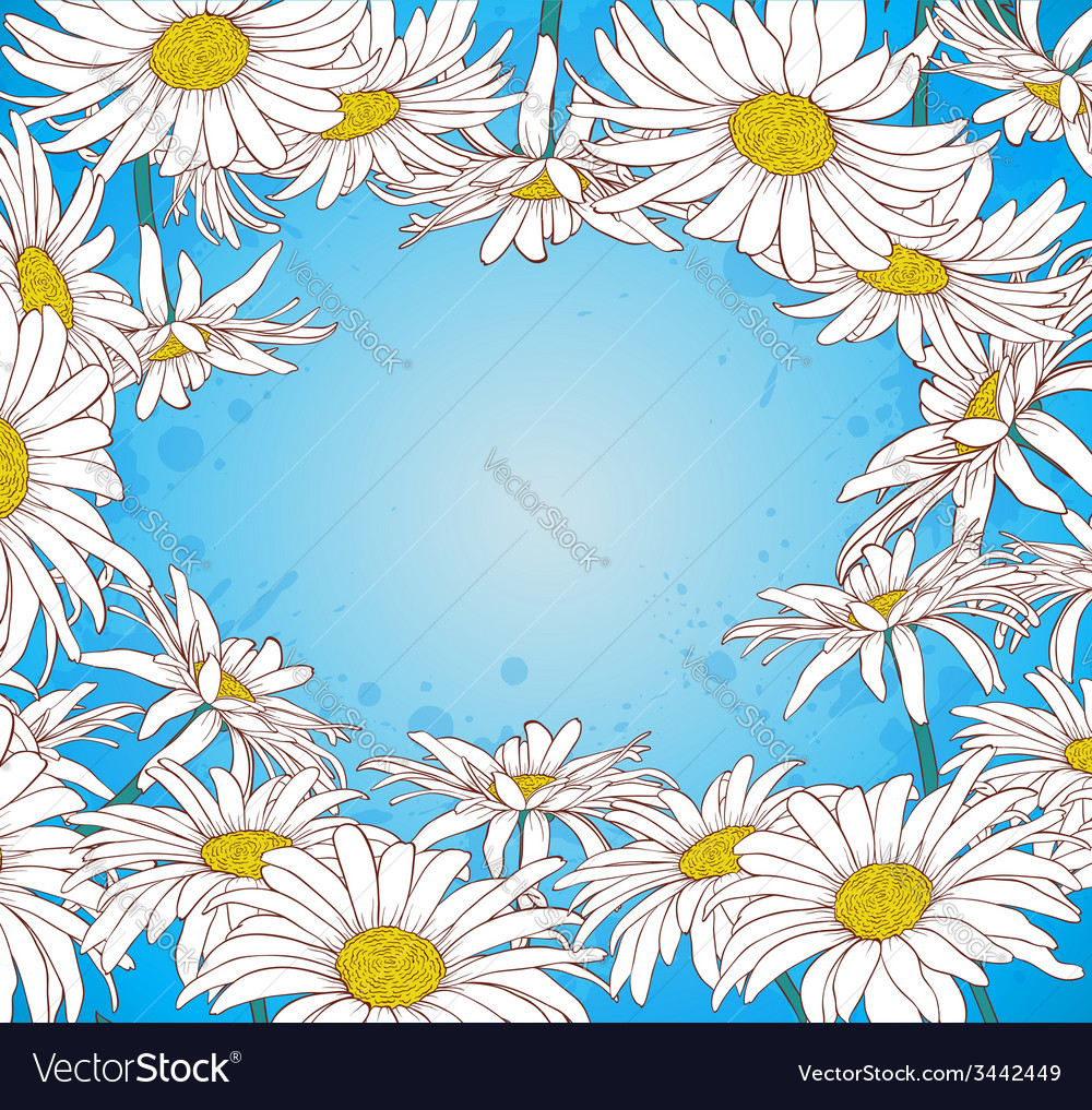 Blue background with chamomile vector | Price: 1 Credit (USD $1)