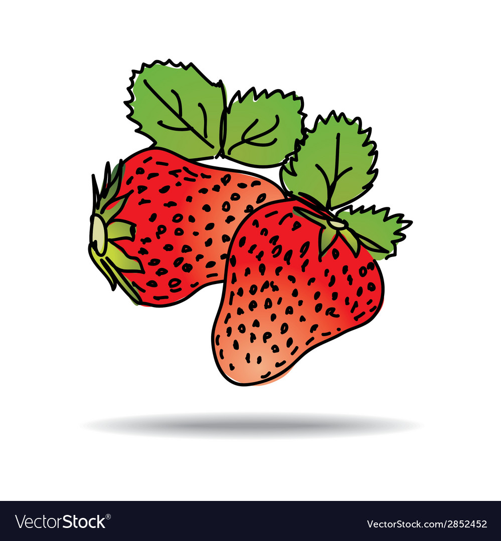 Freehand drawing strawberry icon vector | Price: 1 Credit (USD $1)