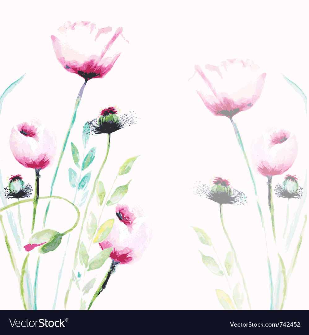 Pink poppy flowers vector | Price: 1 Credit (USD $1)