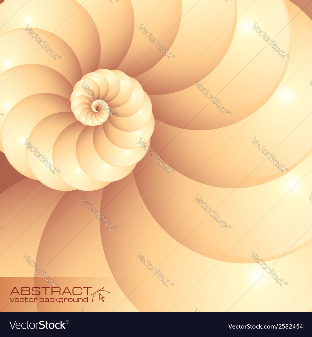 Abstract seashell background vector | Price: 1 Credit (USD $1)