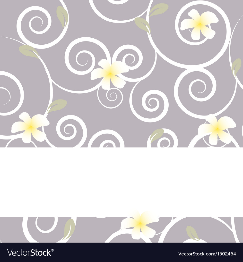 Tropical flowers frangipani plumeria vector | Price: 1 Credit (USD $1)