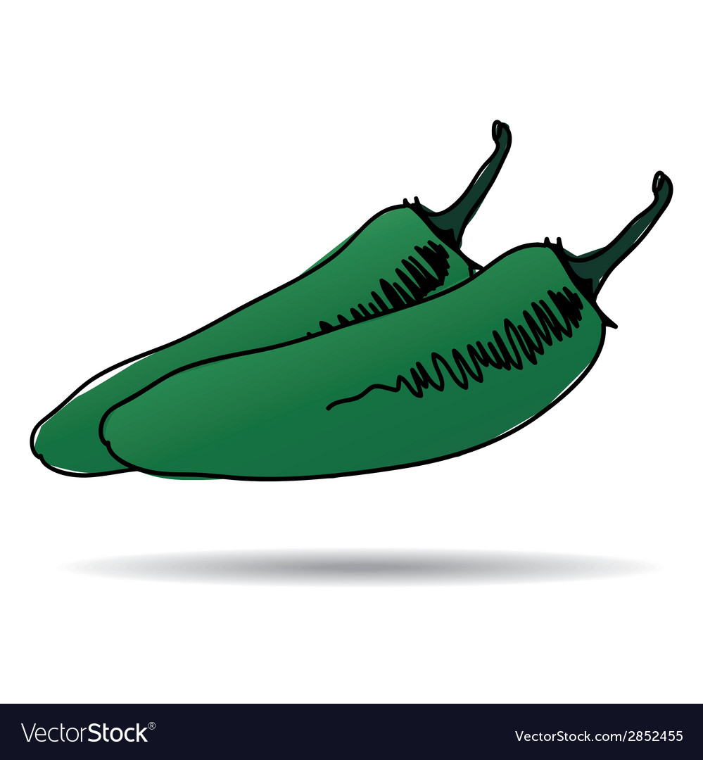 Freehand drawing jalapeno icon vector | Price: 1 Credit (USD $1)