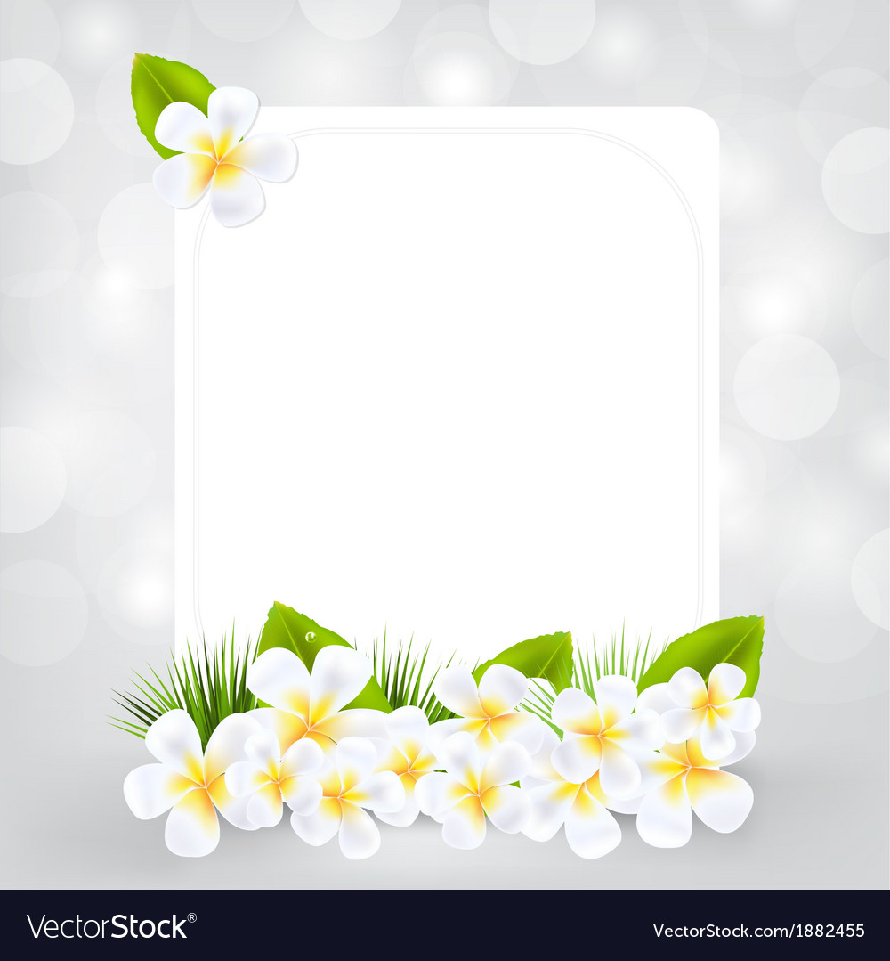 Gift card with frangipani vector | Price: 1 Credit (USD $1)