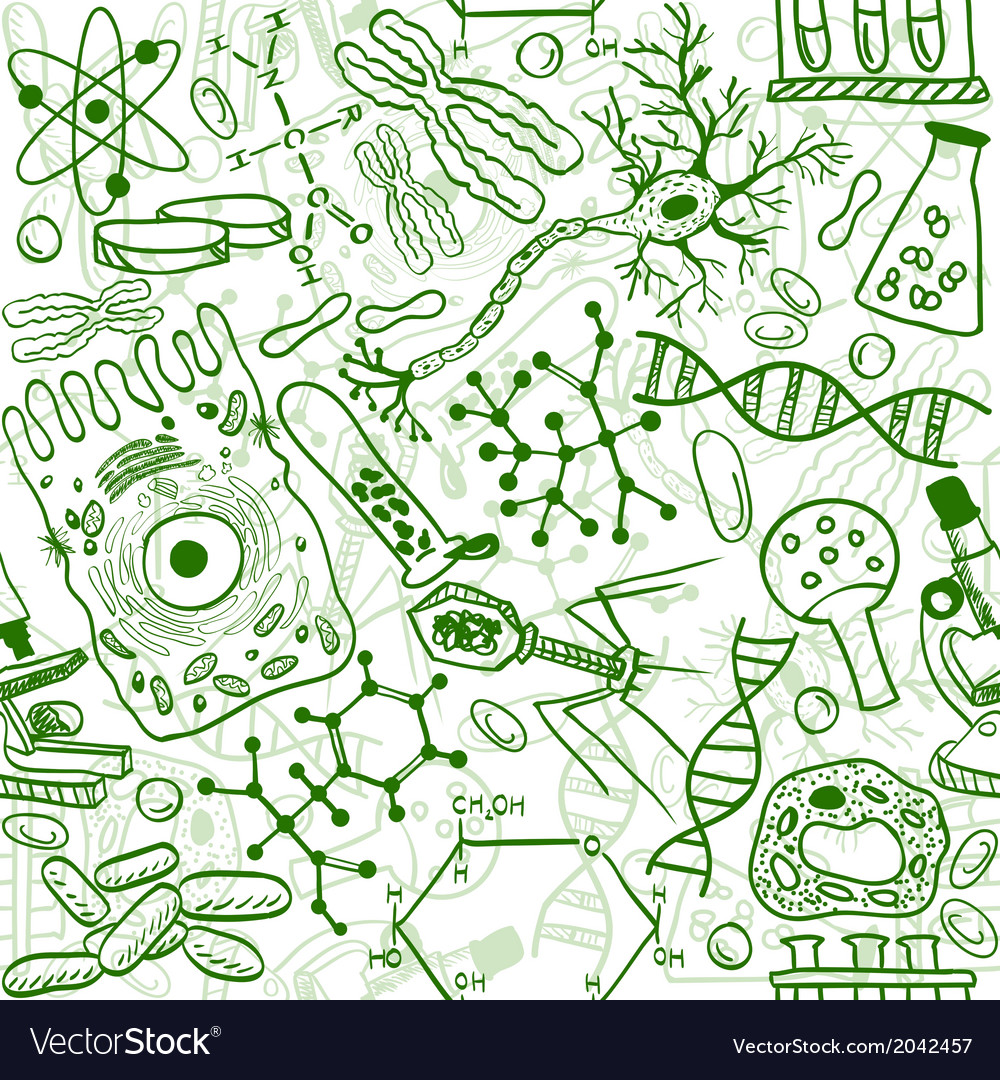 Biology drawings vector | Price: 1 Credit (USD $1)