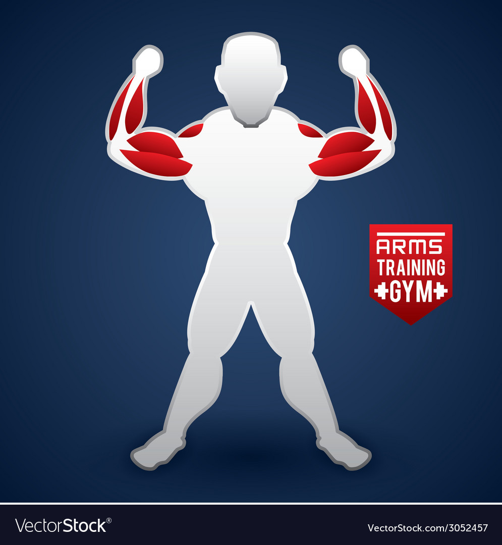 Bodybuilding design vector | Price: 1 Credit (USD $1)