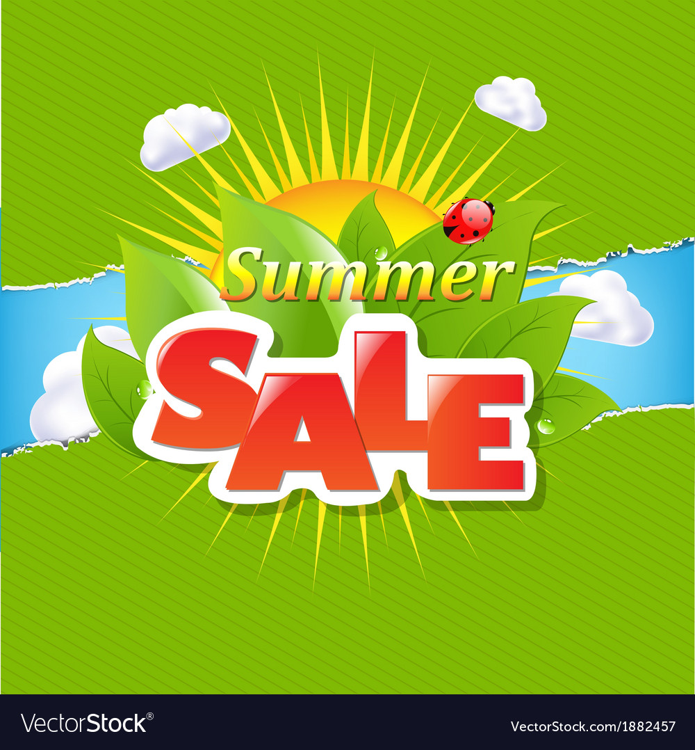 Green torn paper borders and summer sale banner vector | Price: 1 Credit (USD $1)