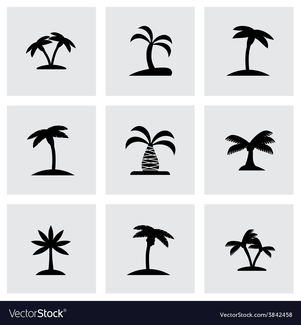 Palm icon set vector | Price: 1 Credit (USD $1)