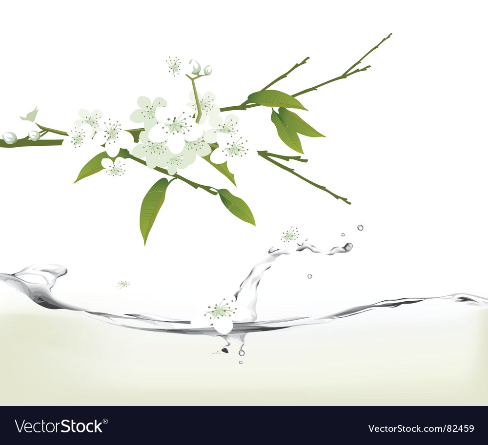 Nature fresh vector | Price: 1 Credit (USD $1)