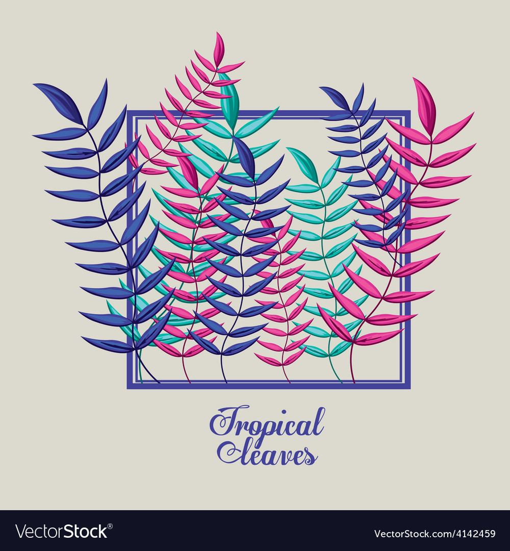 Tropical flowers design vector | Price: 1 Credit (USD $1)