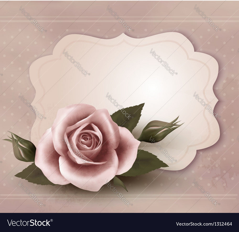Retro greeting card with pink rose vector | Price: 3 Credit (USD $3)