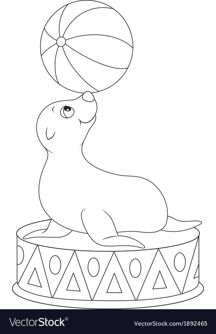 Circus seal equilibrist vector   Price: 1 Credit (USD $1)