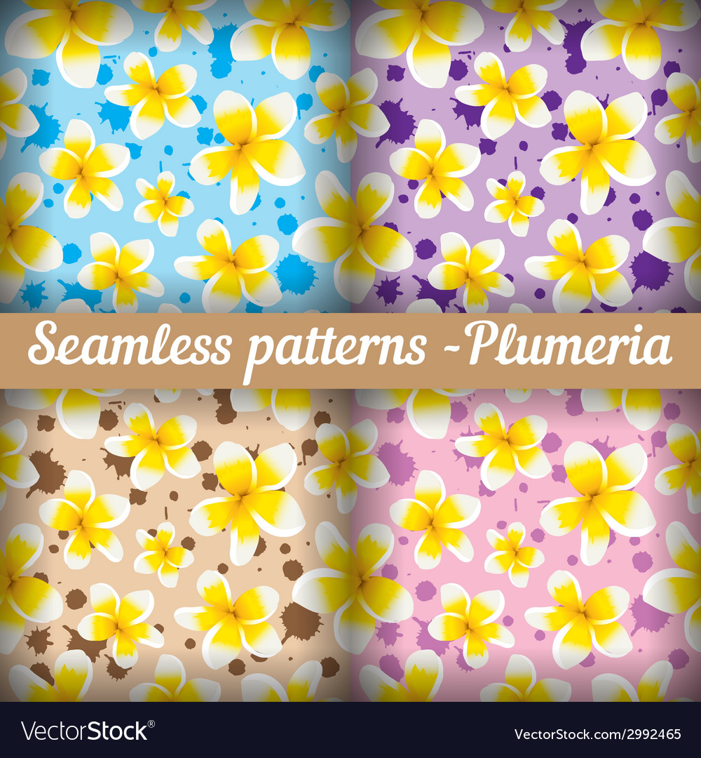 Plumeria set of seamless patterns floral vector | Price: 1 Credit (USD $1)