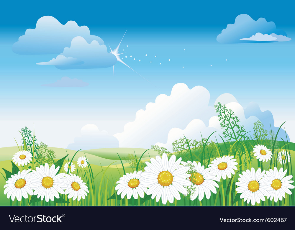 Chamomile on blue sky vector | Price: 3 Credit (USD $3)