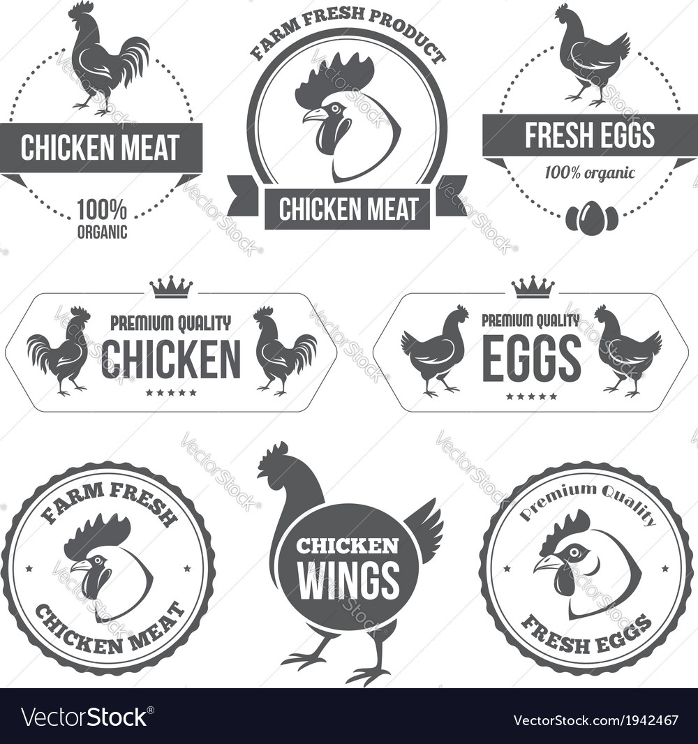 Chicken meat and eggs 1 vector | Price: 1 Credit (USD $1)