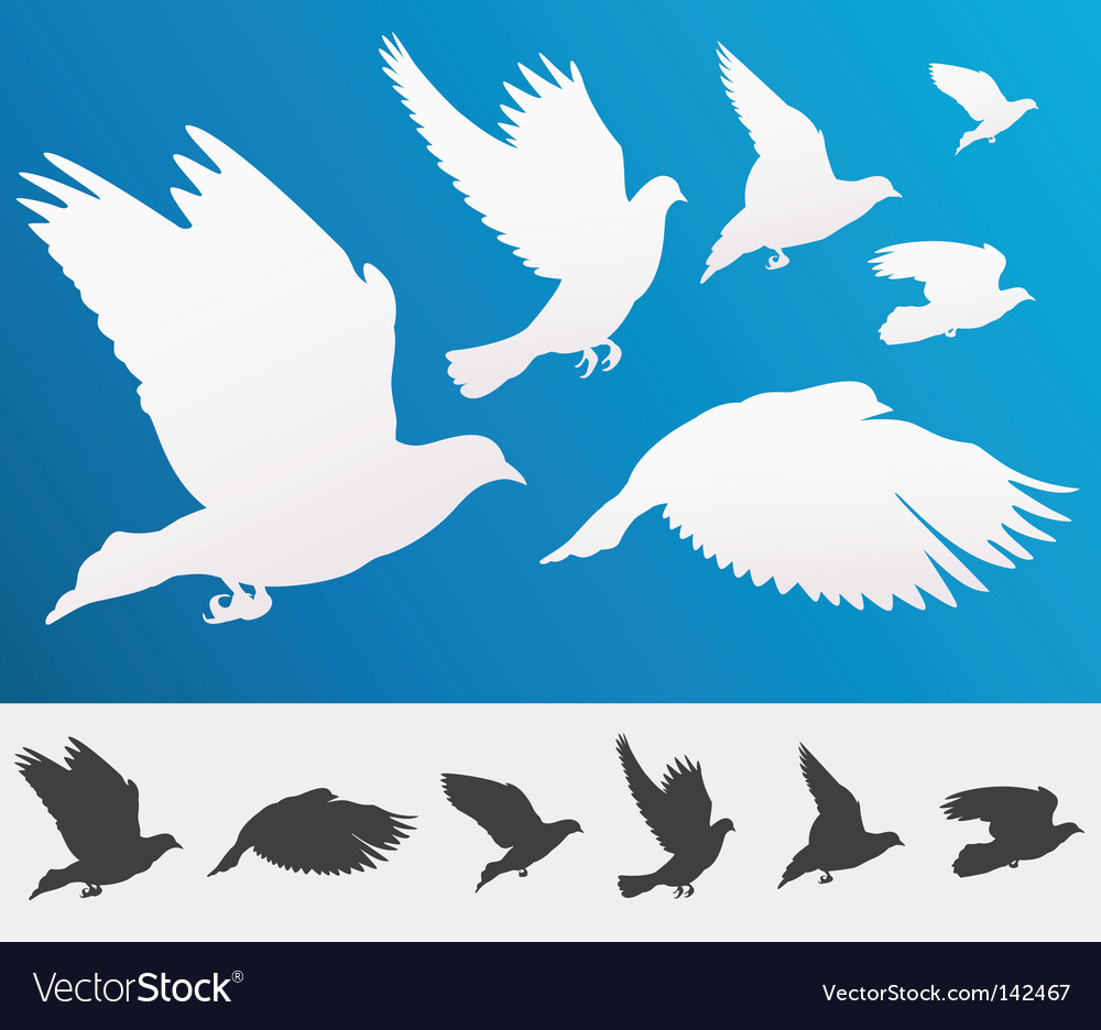 Flying birds silhouette vector | Price: 1 Credit (USD $1)