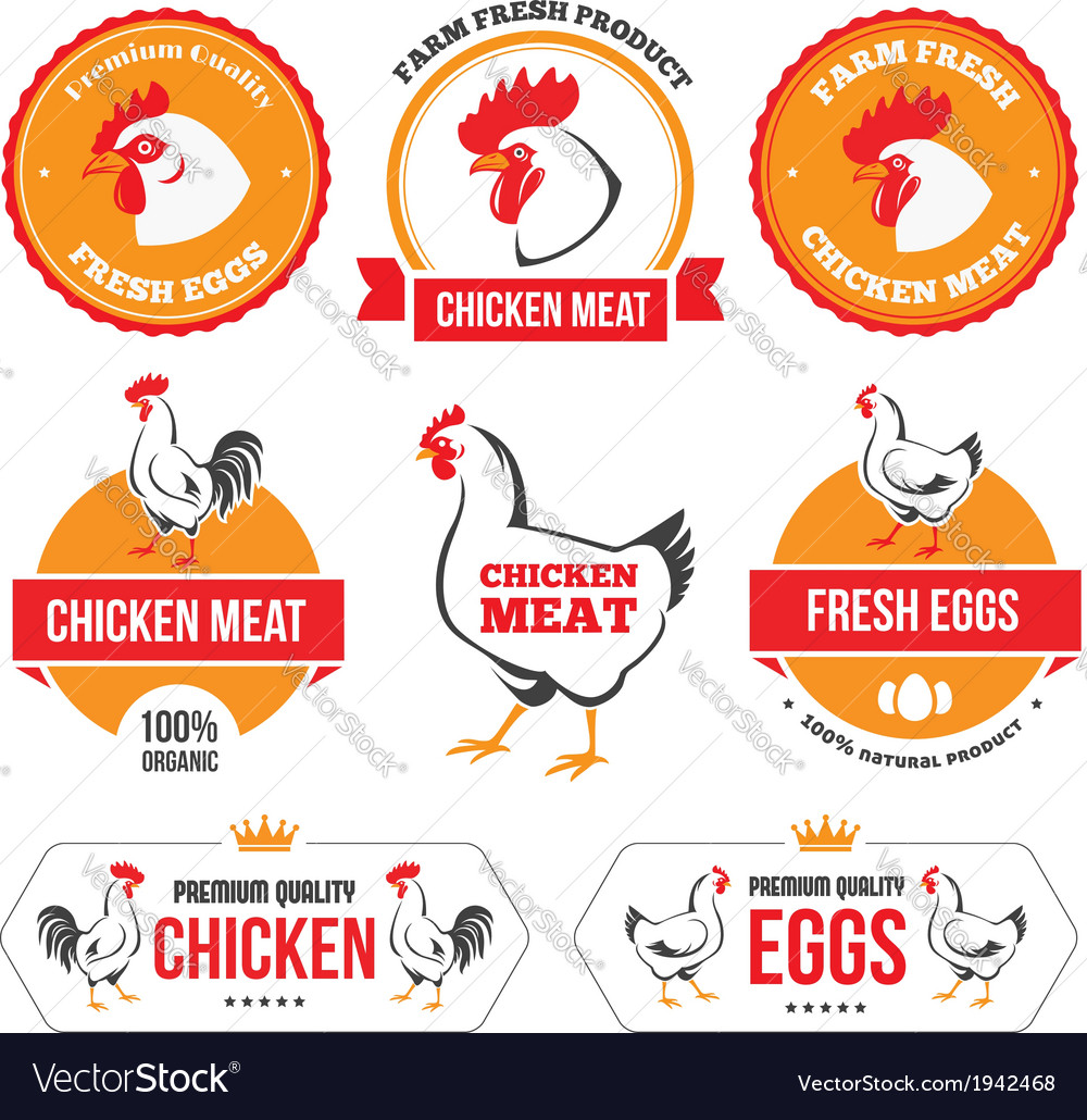 Chicken meat and eggs 2 vector | Price: 1 Credit (USD $1)