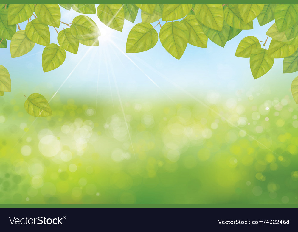 Leaves spring background vector | Price: 1 Credit (USD $1)