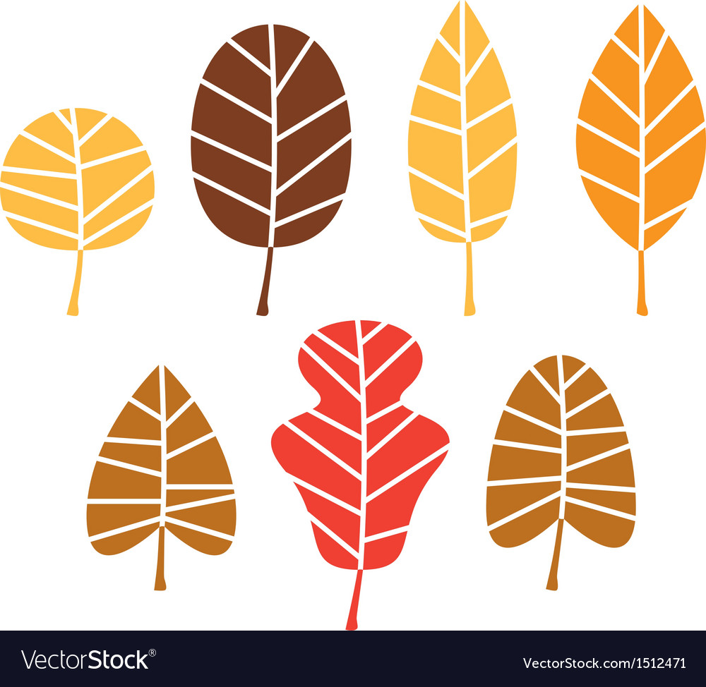 Colorful autumn tree leaves set isolated on white vector | Price: 1 Credit (USD $1)
