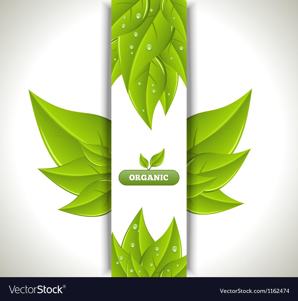 Eco banner vector | Price: 1 Credit (USD $1)