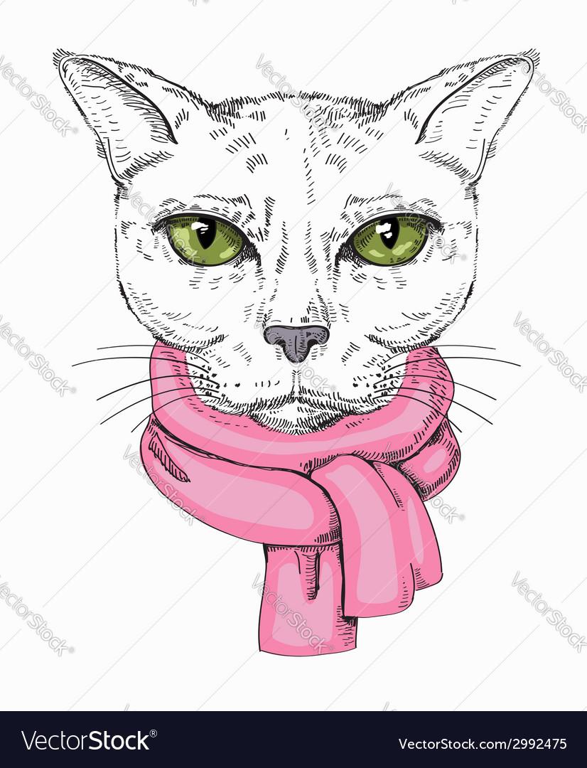 Serious cat vector | Price: 1 Credit (USD $1)