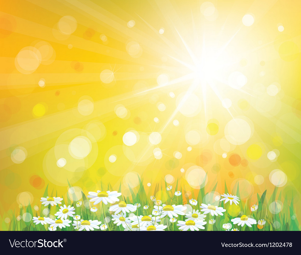 Spring sunny background vector | Price: 1 Credit (USD $1)