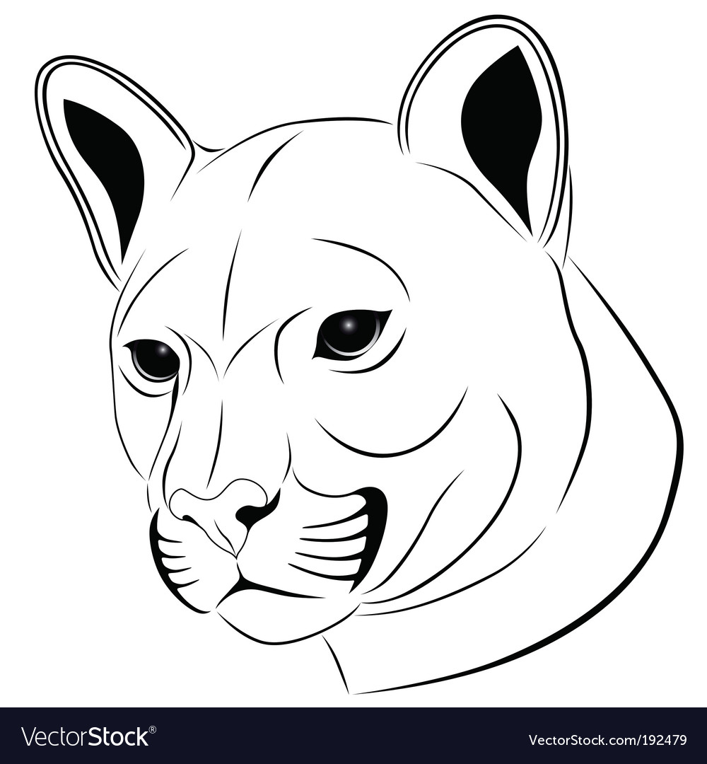Cougar tattoo vector