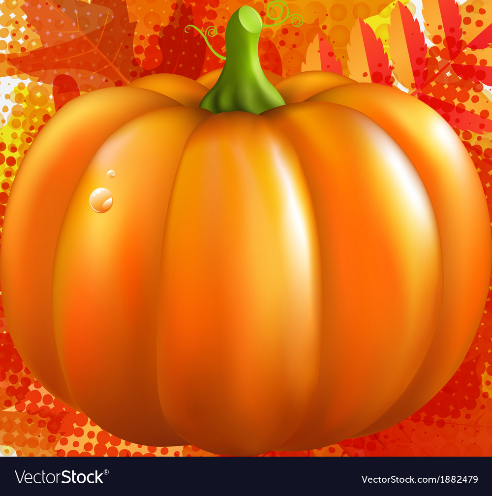 Grunge background with orange pumpkin and leaves vector | Price: 1 Credit (USD $1)