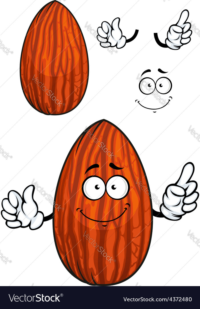 Cartoon shelled almond nut character vector | Price: 1 Credit (USD $1)