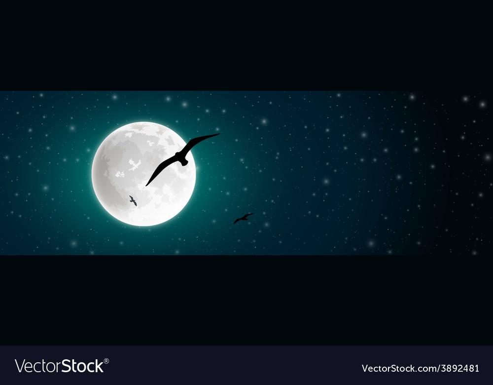 Moon and birds vector
