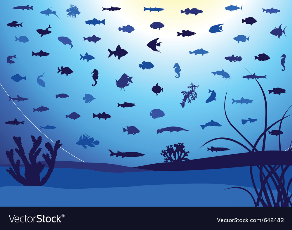 Fish silhouettes underwater vector | Price: 1 Credit (USD $1)