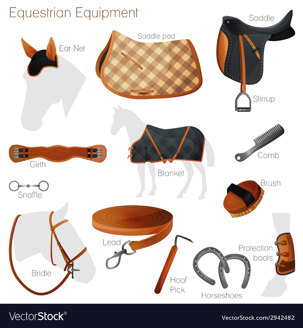 Set of equestrian equipment vector | Price: 1 Credit (USD $1)