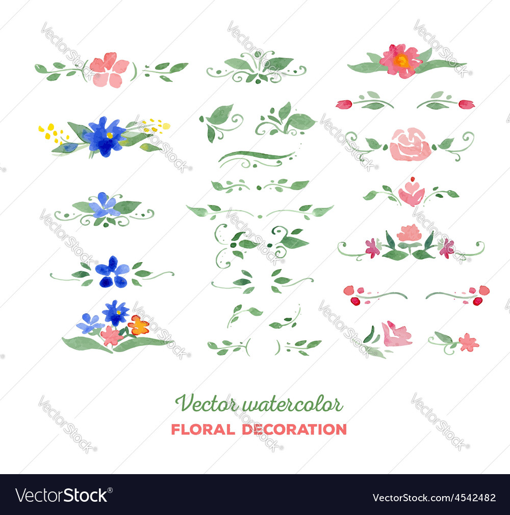 Watercolor floral elements flowers leaves vector | Price: 1 Credit (USD $1)