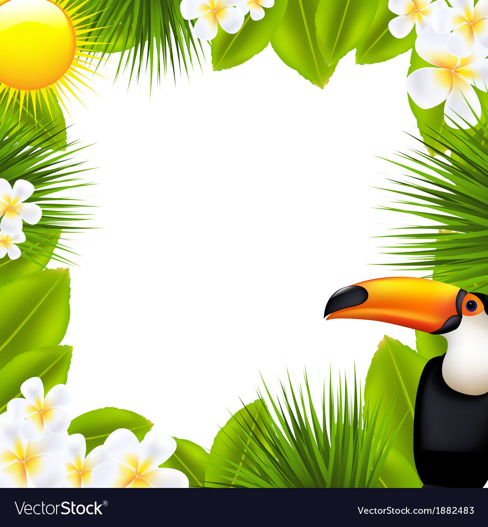 Green frame with tropical elements vector | Price: 1 Credit (USD $1)