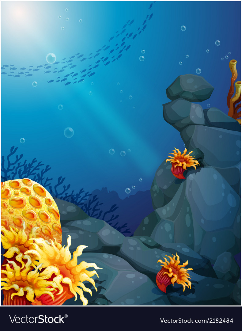 The corals near the rocks and the school of fish vector | Price: 3 Credit (USD $3)