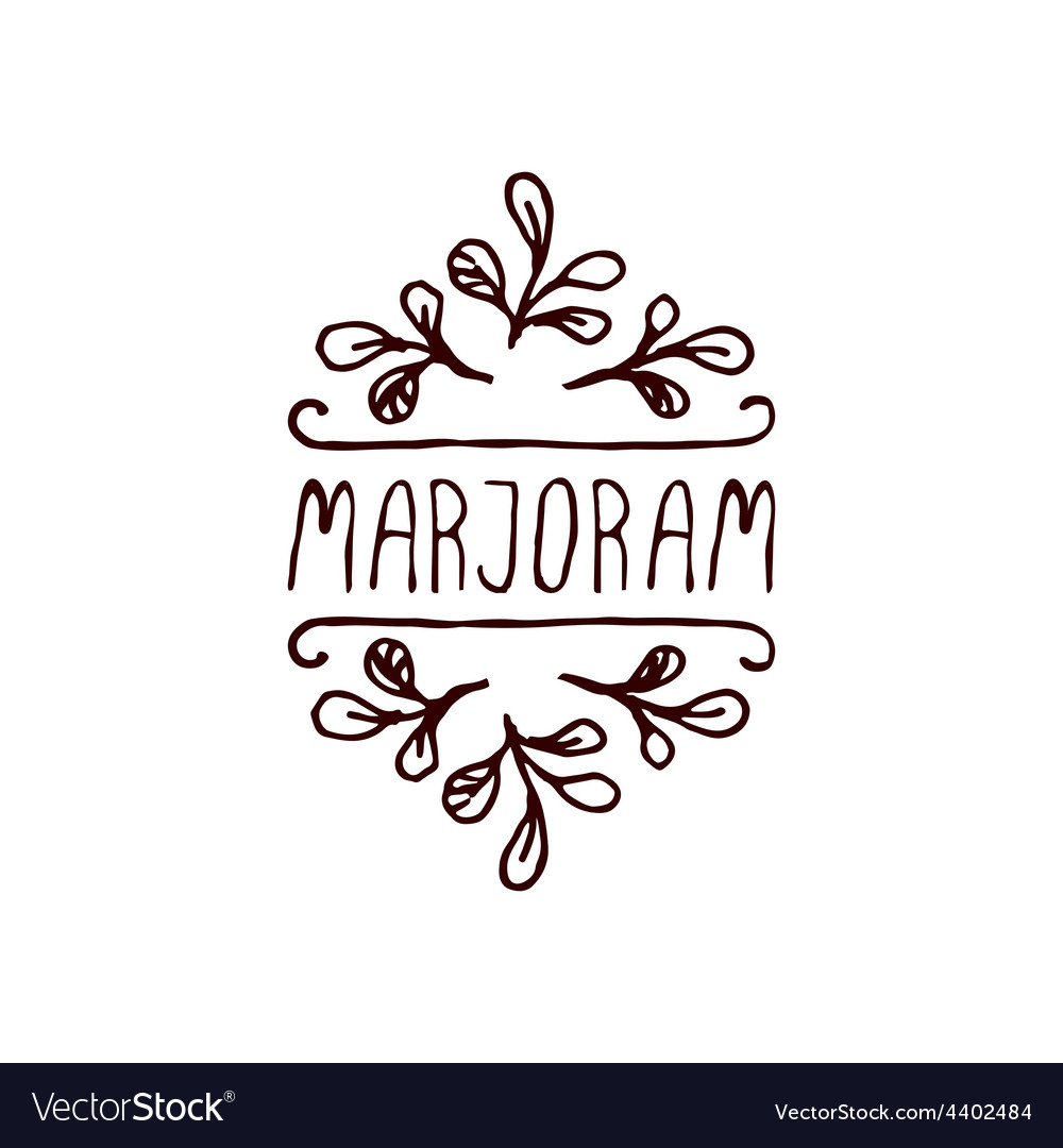 Herbs and spices collection - marjoram vector   Price: 1 Credit (USD $1)