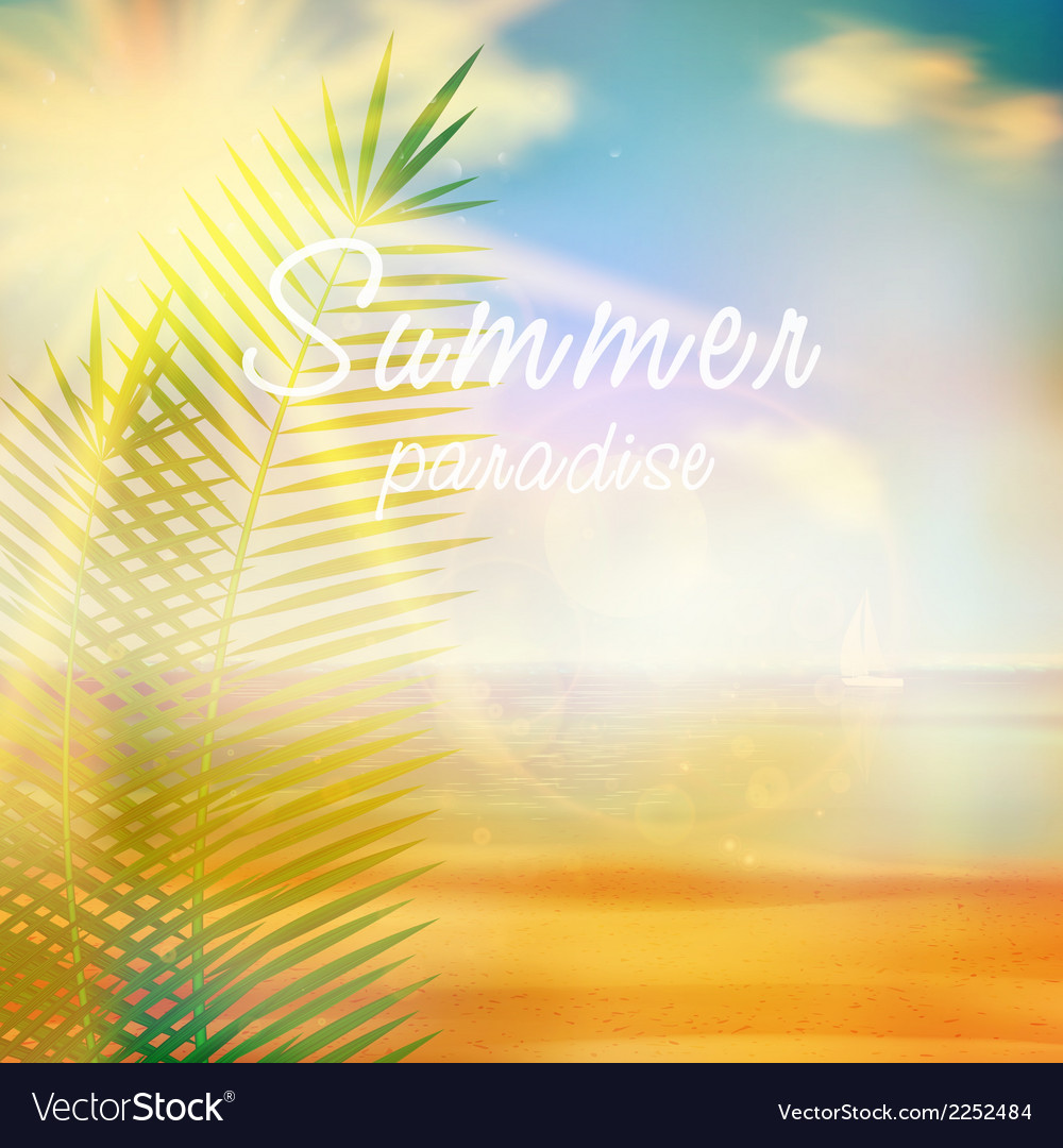 Summer calligraphic design template vector | Price: 1 Credit (USD $1)