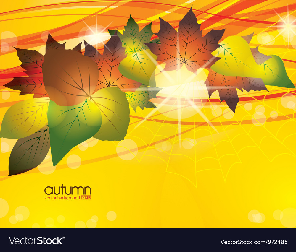 Autumn leaves vector   Price: 1 Credit (USD $1)